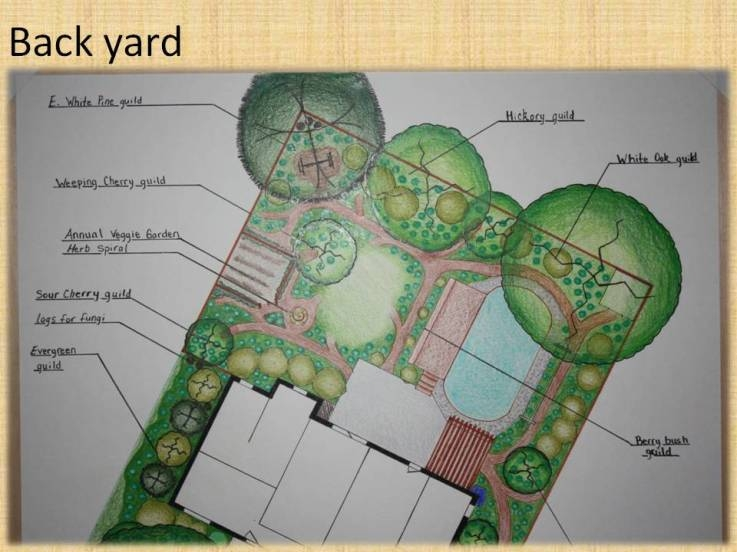 PACE Permaculture Design Final Portfolio Back Yard