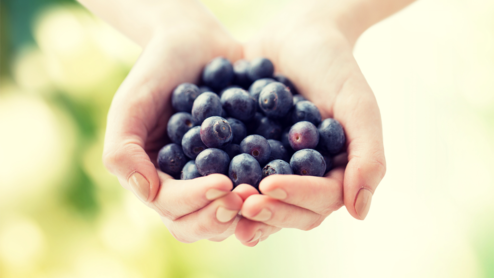 Online Blueberry Course