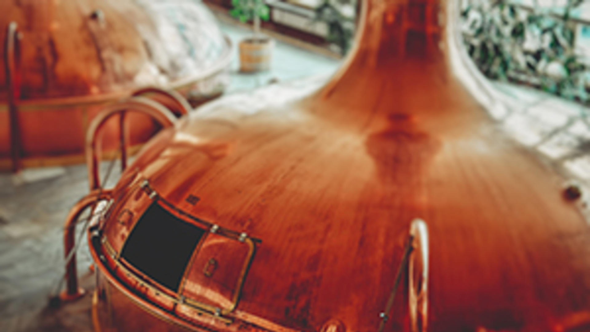 distillery_startup_workshop_image
