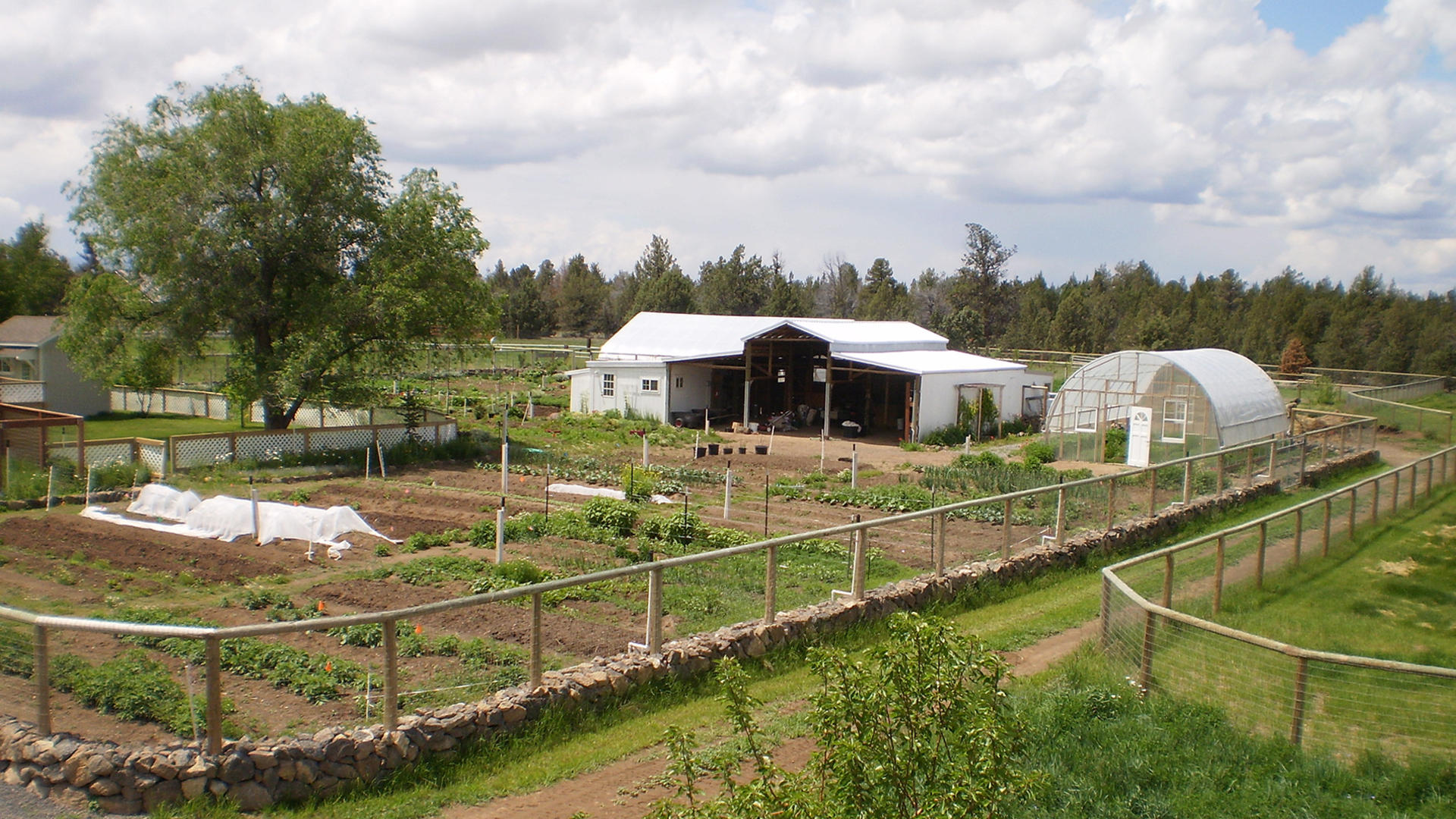 Image of a farm