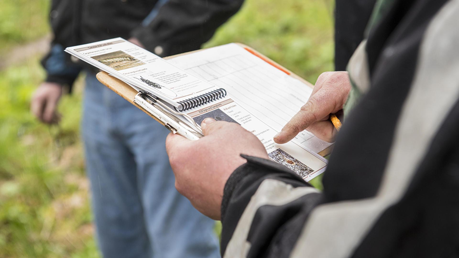 Oregon pest detectors in training