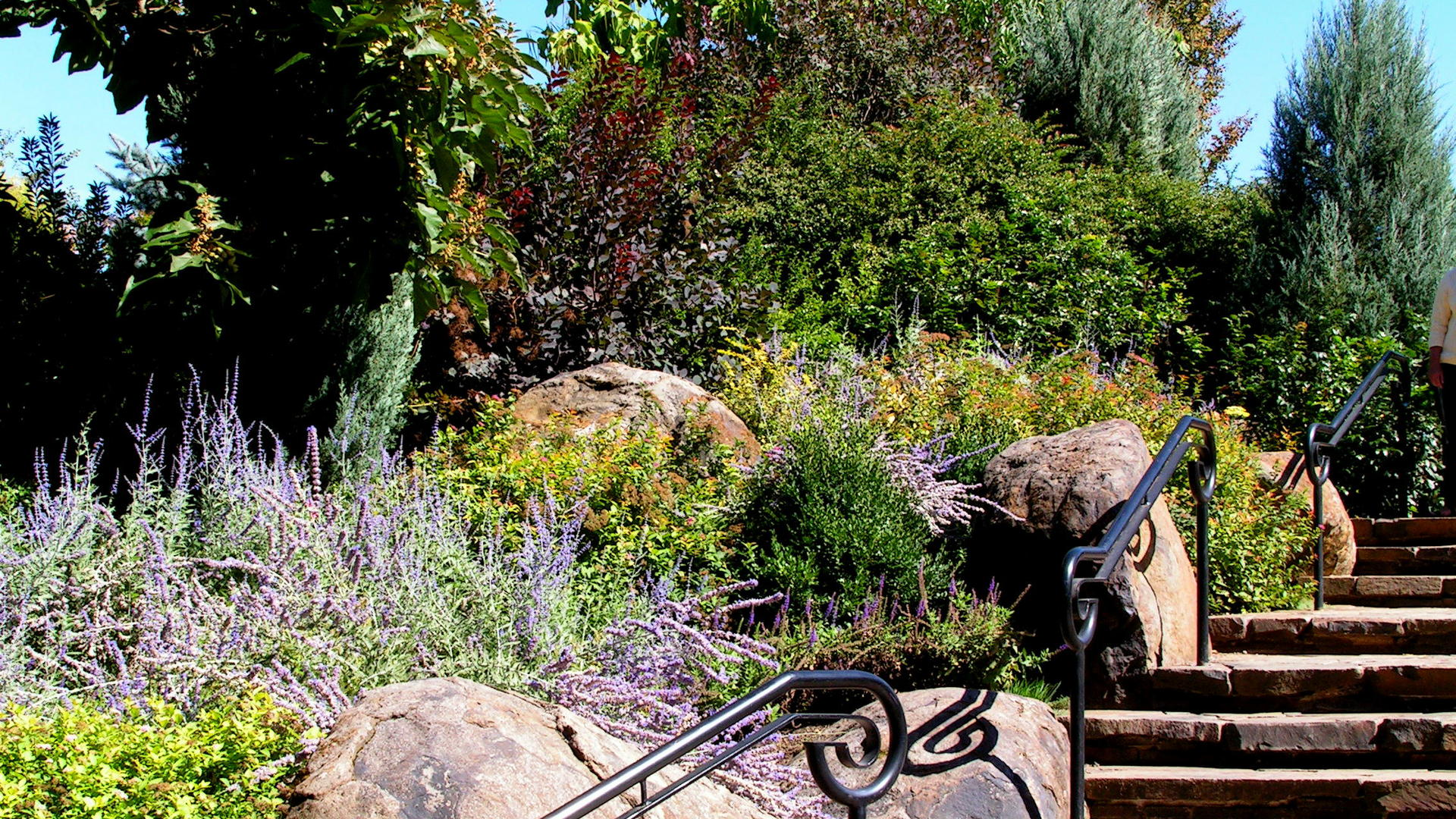Gardening And Landscaping Courses quotes House Designer kitchen