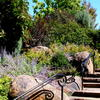 Image of Sustainable Landscape with stone stairs